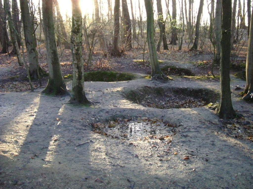 Bomb craters in Sanctuary wood (Public domain image)