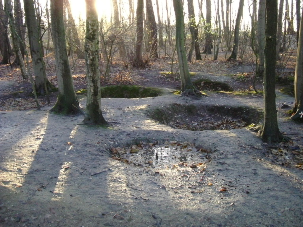 Bomb craters in Sanctuary wood (Public domain image)